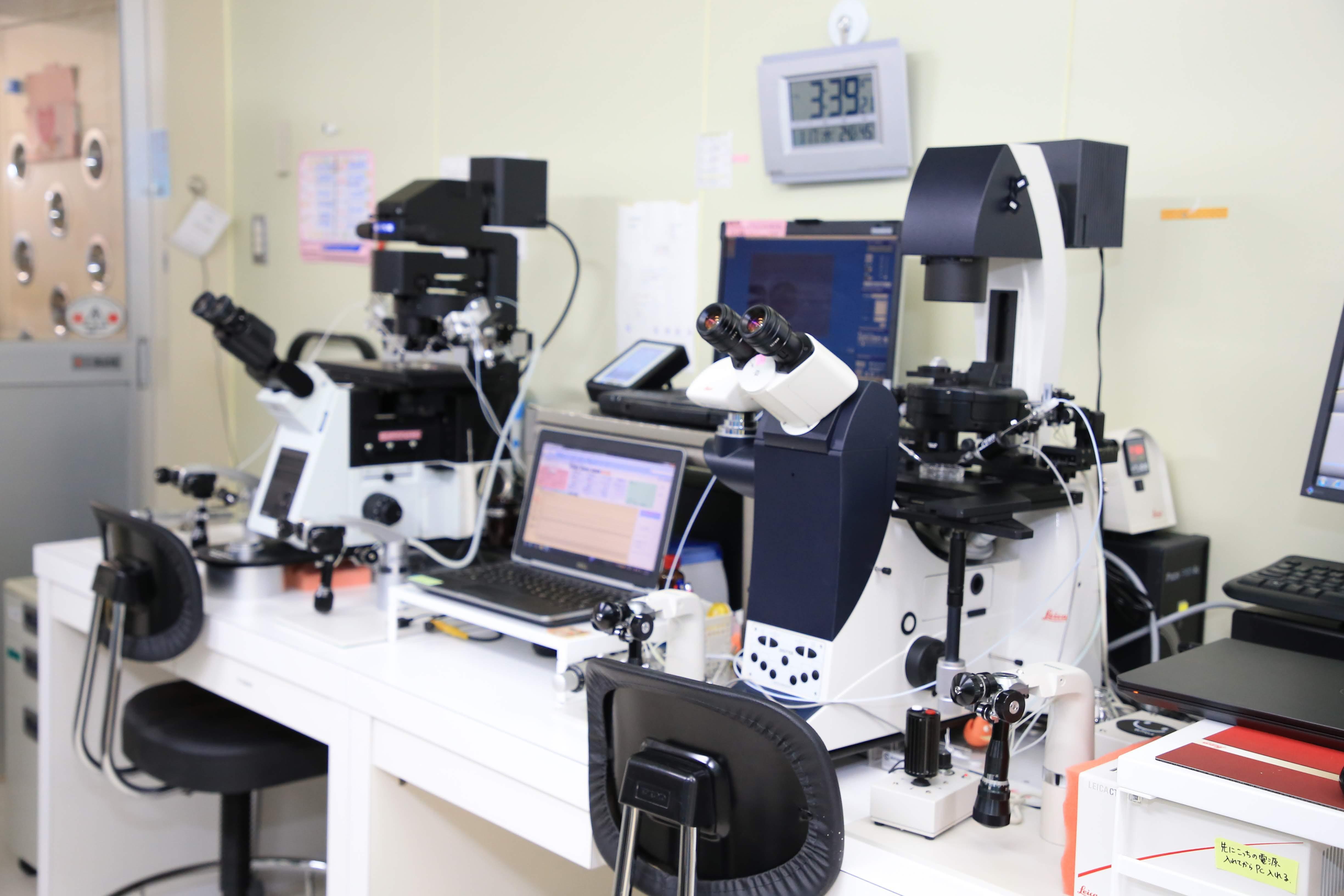 顕微授精システム